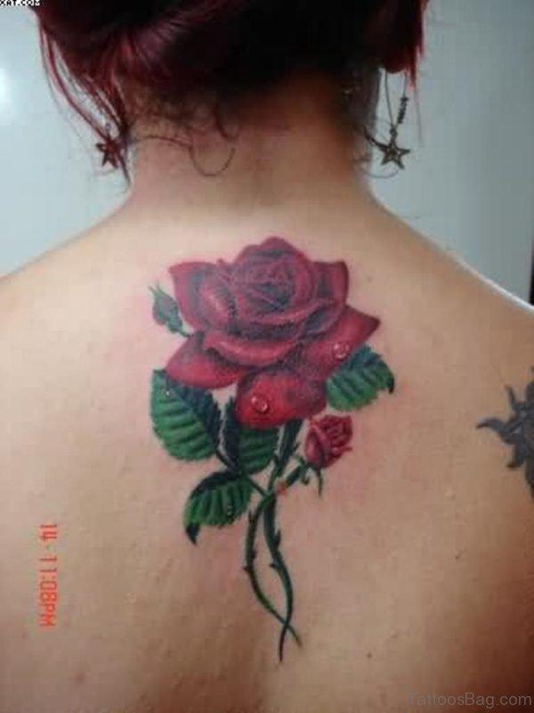 Realistic Rose Vine Tattoo On Upper Back