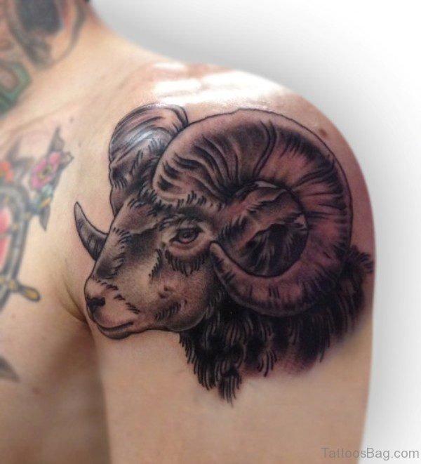 Sheep Shoulder Tattoo