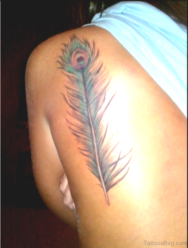 Simple Peacock Feather Tattoo