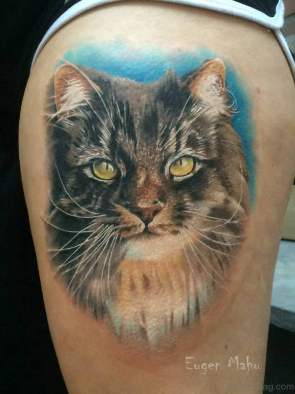Stunning Cat Head Tattoo On Shoulder