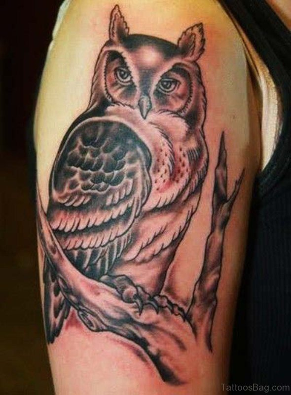 Stylish Owl Tattoo On Shoulder