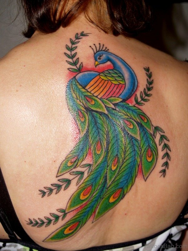 Sweet Peacock Tattoo On Back