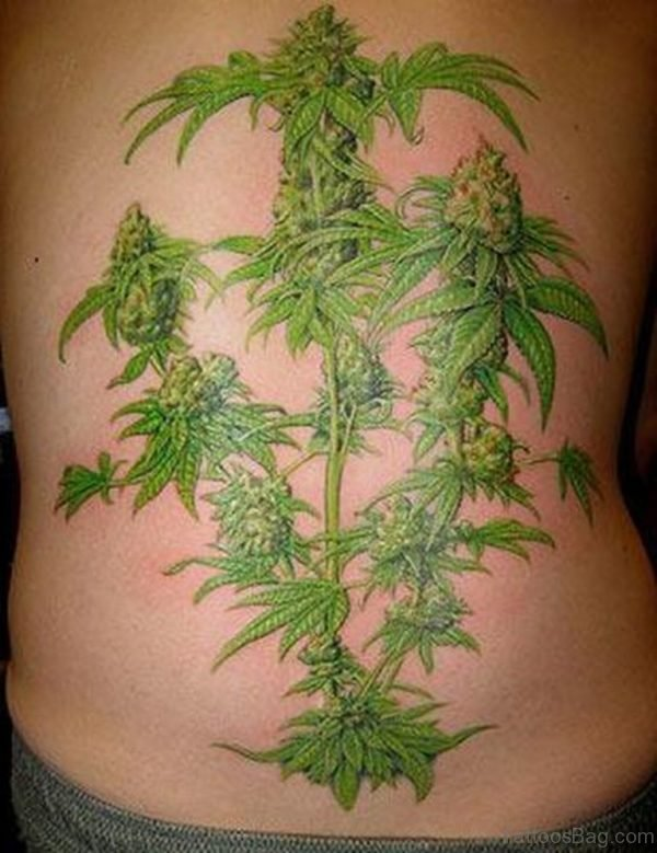 Tree Tattoo On Lower Back