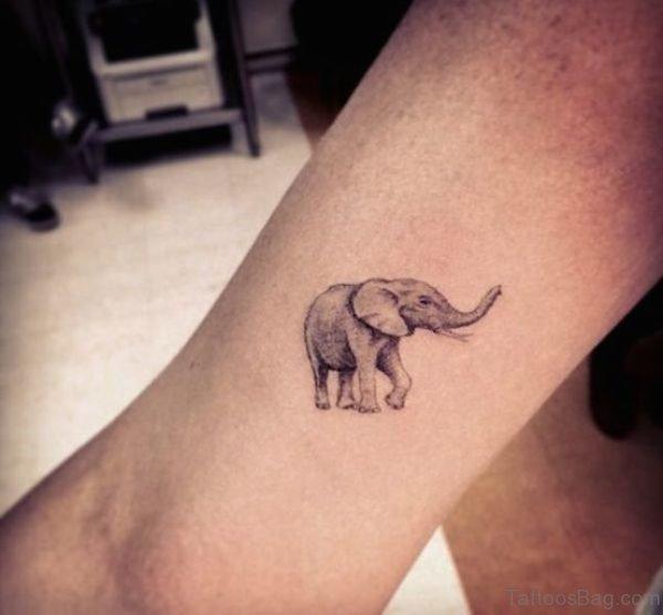 Unique Elephant Tattoo On Forearm