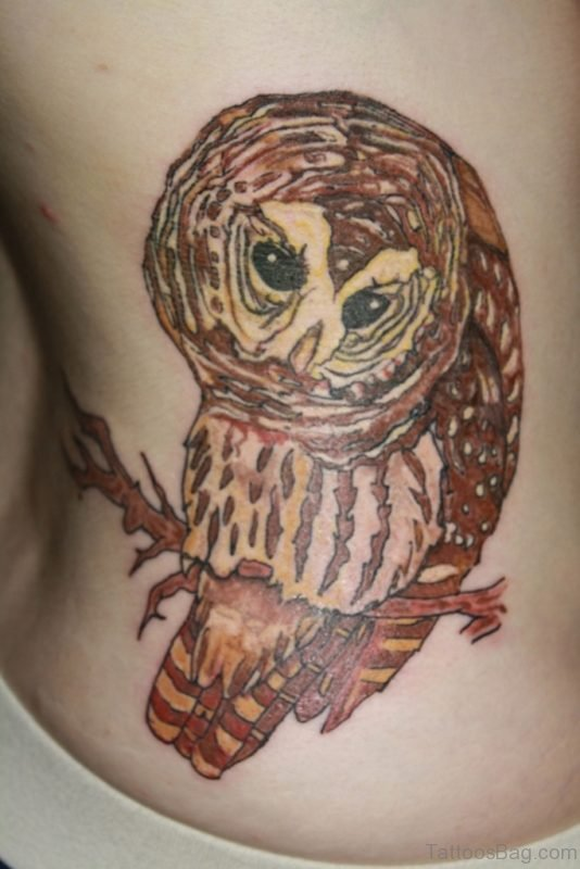 Unique Owl Tattoo On Rib