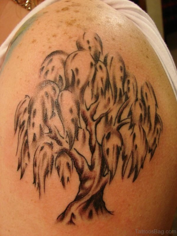 Willow Tree Tattoo On Shoulder