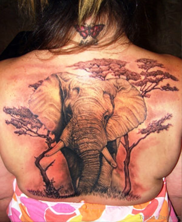 Wonderful Elephant Tattoo On Back