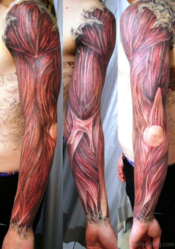 Best Anatomical Tattoo On Shoulder