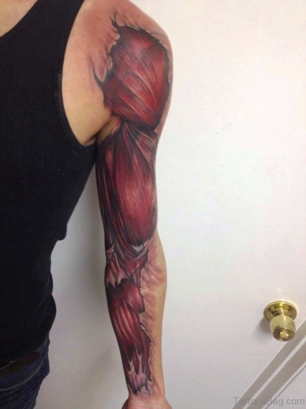 Excellent Anatomical Shoulder And Arm Tattoo
