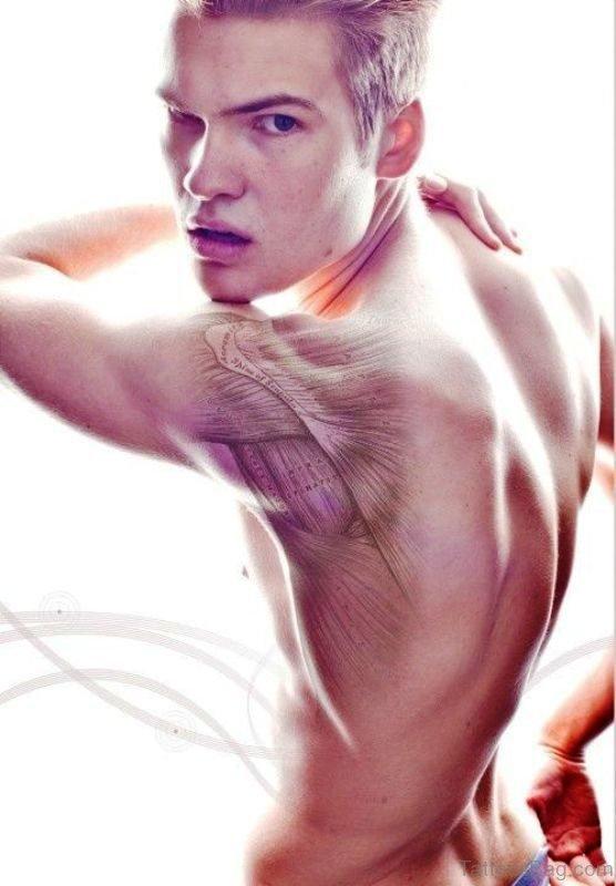 Light Grey Anatomical Tattoo On Shoulder